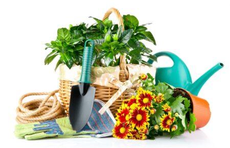 ЭКОтовары для сада, огорода
